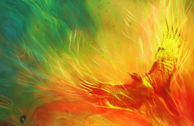 PhoenixRedYelGreFire