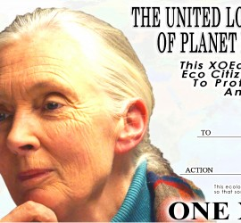 JaneGoodallXOEarthAwardS